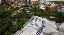 Malaysia collects DNA samples to identify MH17 victims
