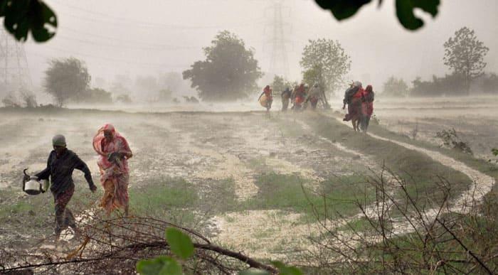 Monsoons, Monsoon season, Rainy season, Monsoon news, Monsoon Kerala
