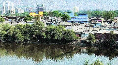 Thane creek has been identified for conservation due to its woody mangroves. Source: Express Photo