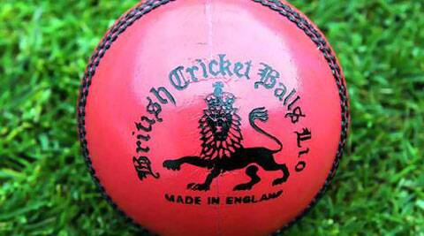 Australia trialled night sessions using the pink ball during the domestic Sheffield Shield season and has mooted hosting a first day-night test against New Zealand in November 2015. (Source: AP File)