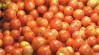 Tomato prices skyrocket to Rs 70/kg, onion at Rs 40/kg in Delhi