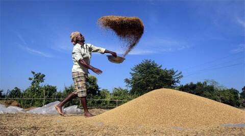 Rural votes, old traumas drive India's WTO brinkmanship
