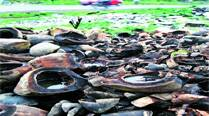 Civic body to serve notice to PWD over mosquito menace
