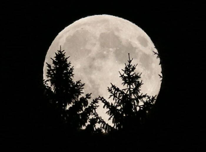 The full moon peeks through trees in a wood near Rasing, Austria. (Source: AP)