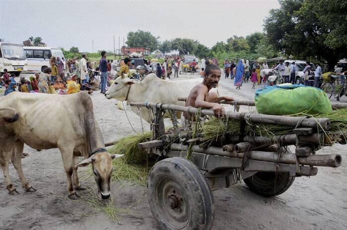 Flood affected villagers have come out on the roads at Birpur due to danger of flood after raised level of water in Kosi river after heavy inflow of water from Nepal's side in Supaul district of Bihar. (Source: PTI)