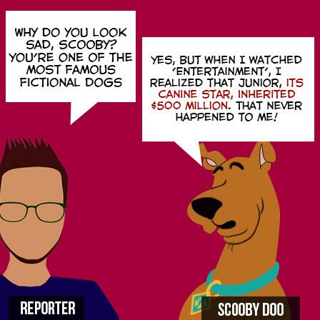 Entertainment_Scooby 1