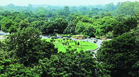Green cover in Chandigarh at cricket stadium roundabout on Friday.