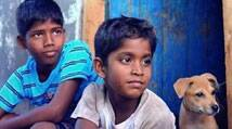Dhanush's 'Kaaka Muttai' to have world premiere at Toronto International Film Festival