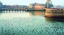 HC stalls beautification work of Jamnagar's Lakhota Lake