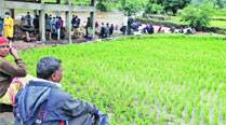 Pune landslide: As villagers flee in panic, no one to tend to paddy fields