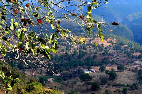 The valley has several hamlets and is richly endowed by several medicinal plants, herbs and trees
