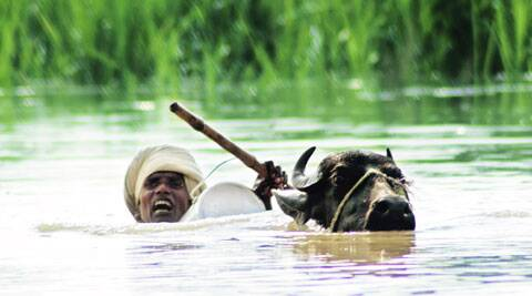 A man tries to wade out of his flood-hit village in Bahraich, UP, on Sunday.