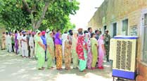 In turnout stakes, Talwandi bests Patiala