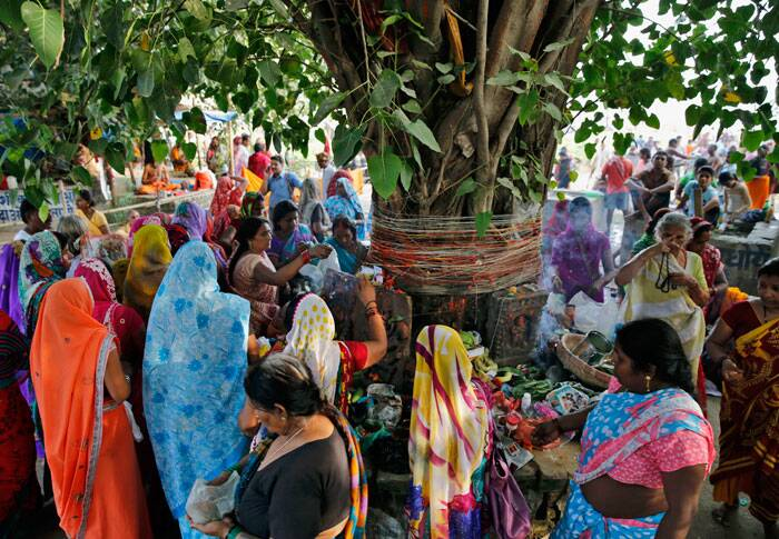 Women offer prayers to a peepal tree on the auspicious occasion of Somvati Amavasya in Allahabad on Monday (Aug. 25, 2014). Somvati Amavasya is the no moon day that falls on a Monday in a traditional Hindu lunar calendar. It is a rare occurrence in a year and is considered highly auspicious. (Source: AP)
