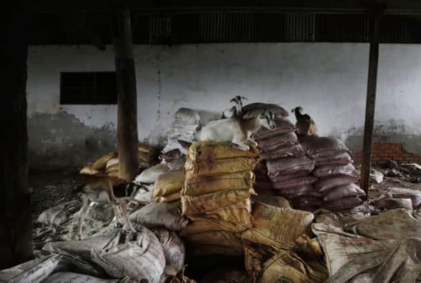 Death, hunger stalk tea-estate workers in Bundapani