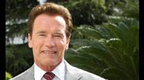 Arnold Schwarzenegger unveils his official portrait