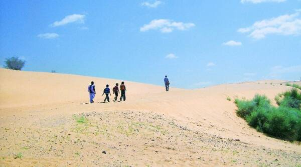 The sisters, who would cross sand dunes stretching over 5 km to school everyday, were raped in these shrubs. (Source: Sweta Dutta)