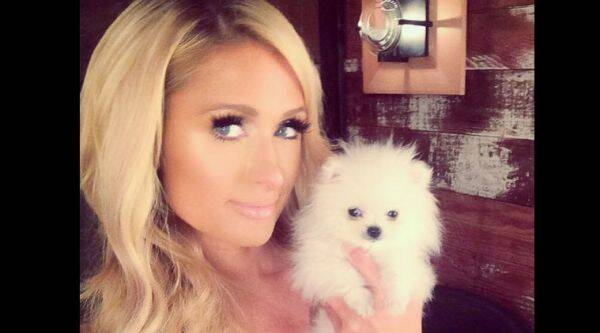 Paris Hilton shared the pictures of her new pet, Mr Amazing, on her Instagram page. (Source: Instagram)