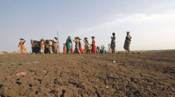 If the MGNREGS is here to stay, there has to be an effort to create capacities in low-income states to successfully plan, organise and implement such large social schemes. (Source: Reuters photo)