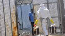 Ebola death toll rises to 4951 in 8 countries: WHO