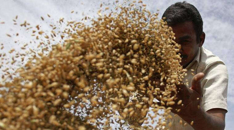 Permanent solution on food security in WTO rules must: India