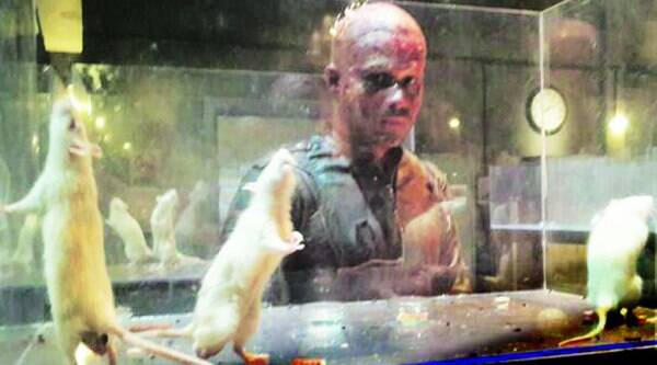 A still from the film, Mr X