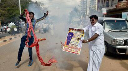 Jayalalithaa gets bail, AIADMK supporters break out into celebrations
