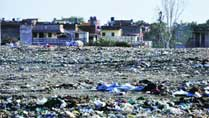 City's main garbage dump close by, people at Dadumajra live with stench