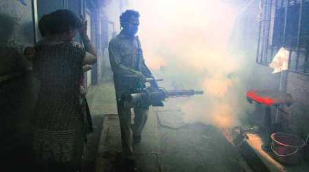 South Corporation yet to begin fogging to fight dengue