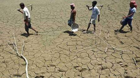 To check suicides, Maharashtra govt wants drought-hit farmers to sell fish