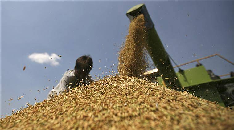 India and the United States have resolved their differences on public stockholding of food. (Reuters)