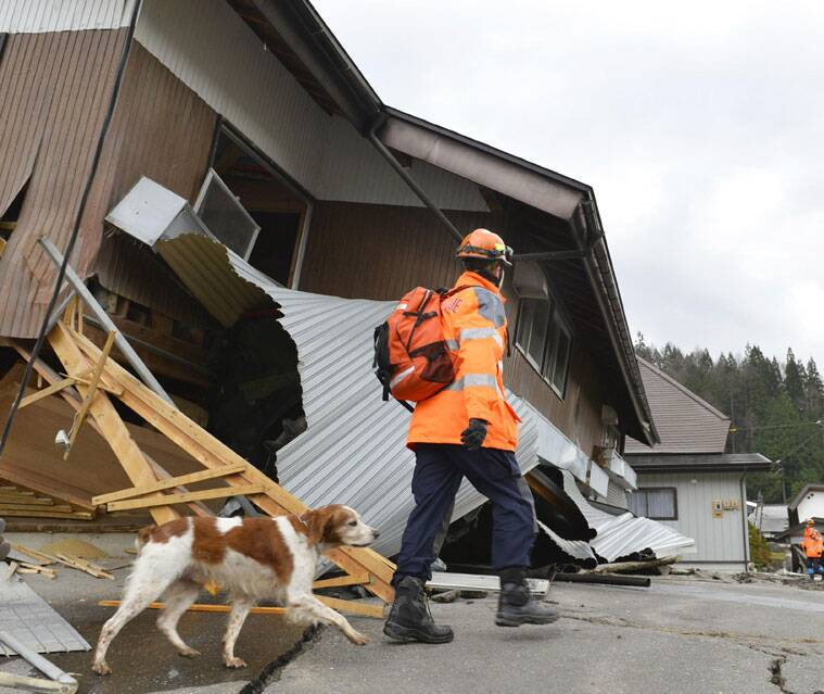 A rescuer with a sniffer dog examines a damaged house Sunday, Nov. 23, 2014 after a strong earthquake hit Hakuba, Nagano prefecture, central Japan, Saturday night. More than 20 people have been hurt after the magnitude-6.8 earthquake shook the mountainous area that hosted the 1998 winter Olympics. (Source: AP Photo/Kyodo News)