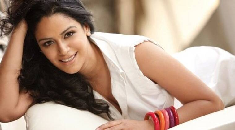 """Actress Mona Singh, who is currently busy promoting her next film """"Zed Plus"""", says television shows should come in seasons as watching daily soaps gets boring."""