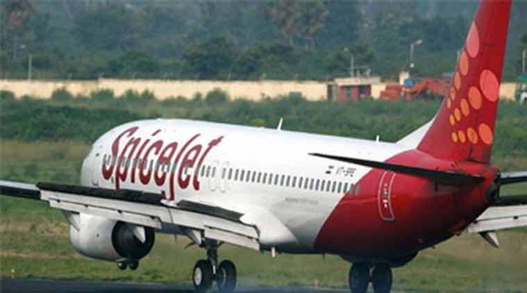 Scare in Surat as SpiceJet flight hits buffalo before take off | The