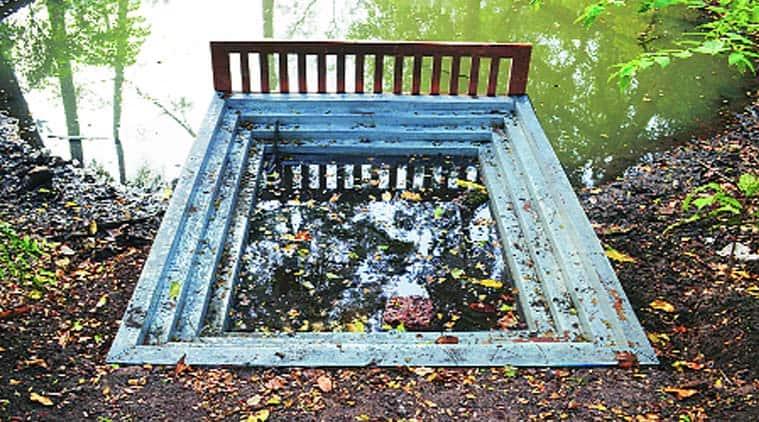 Nandakumar PK's work on a holy pond