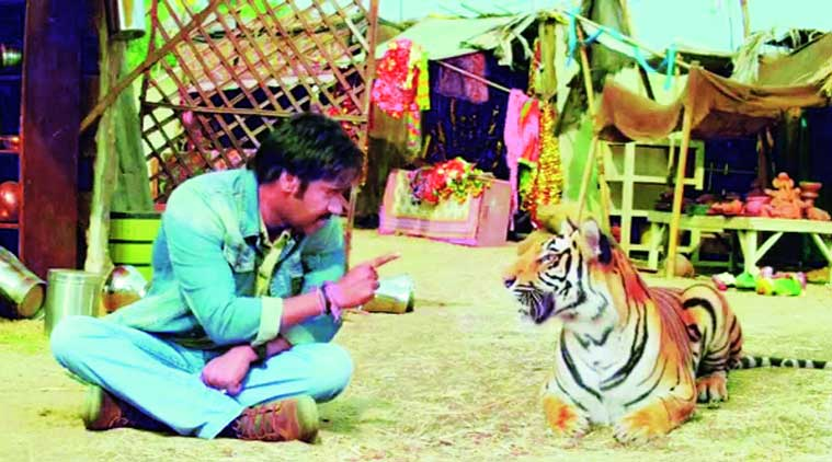 The tiger in the remake of Himmatwala was created with CGI