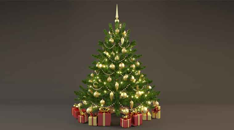 Gift Your Loved Ones A 3D Christmas Tree