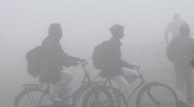 Delhi reels under intense cold wave; train, flight operations hit hard