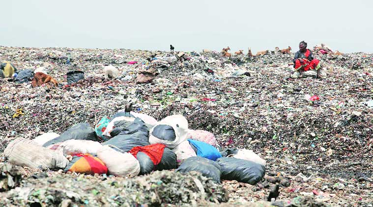 At present, Deonar abattoir generates 75-80 MT of waste daily that makes its way to the already full dumping ground