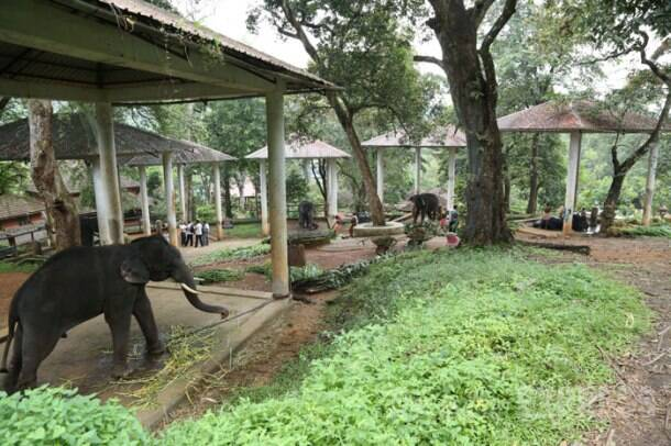 The Big Picture: A new home for Indrajith