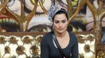 It was not the right time to enter 'Bigg Boss': ReneeDhyani