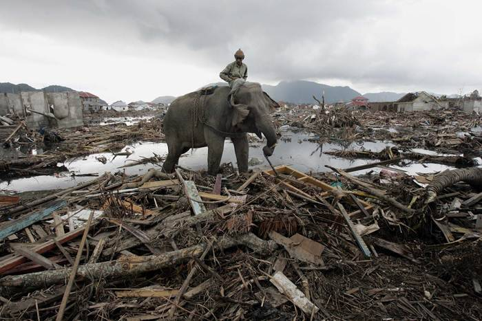Ten years after 2004 disaster, Africa's Indian Ocean nations test ...