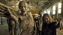 'The Walking Dead' spin-off settingrevealed