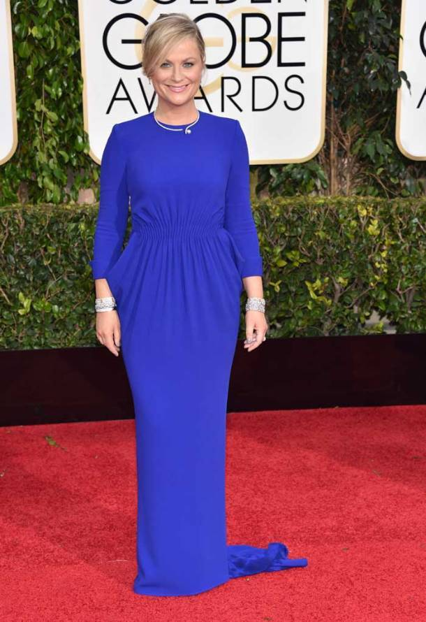 Golden Globes 2015, amy poehler