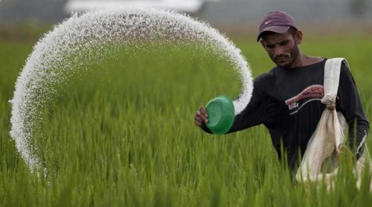 Fertiliser ministry, CCEA, HFCL's Haldia unit, Haldia unit of Hindustan Fertilizer Corp, mamata banerjee, indian express news, india news, business news