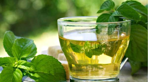Green Tea Benefits for Teeth and Weight