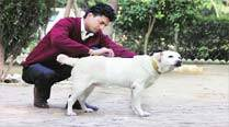 At all-India contest, Ludhiana police's only narcotics trained dog remains out ofaction