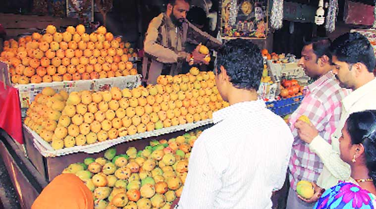 mango price, all india mango growers' association, insram ali, mango crop destroyed, mango farmers