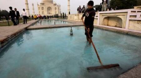 Green cover for Taj Mahal a damp squib