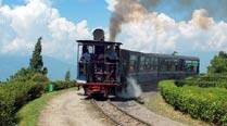 Fearing brakes have failed, woman jumps off toy train,dies